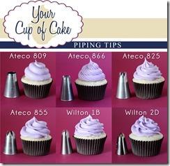 YCC-piping-tips